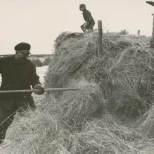 Latojen tyhjäys 1961