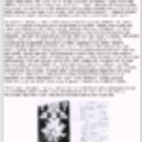 http://81.209.83.96/repository/124/pajuluoman_pappila.pdf